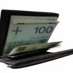 wallet-1319856-m