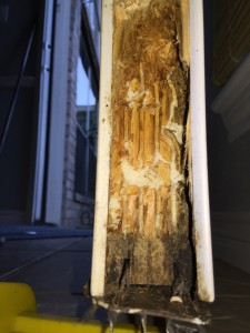 rotten wood door - inside