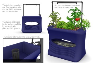 starting aquaponics kit