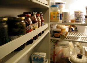 refrigerator blindness